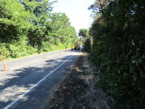 Hand clearing of vegetation will preserve more brush and leave a cleaner looking finished product. (City of Florence photo)