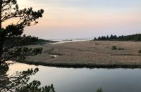 Wax Myrtle Overlook - Florence Oregon
