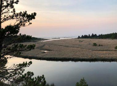 Wax Myrtle Overlook - Florence Oregon
