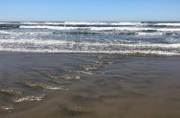 Florence Oregon Ocean Beach